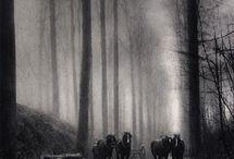 Leonard Misonne / Belgian photographer (1870 - 1943) , pictorialist / by otamatik