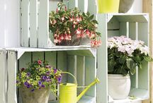 Garden ideas, Gardino, Gardening