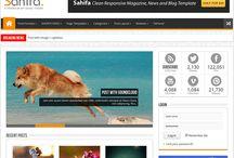 Magazine Style WordPress Themes