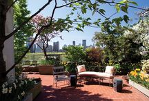 Preen your Greens / Ideas to spruce up your terrace and garden areas