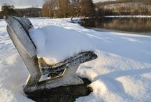 Terra Morchellarum : Neige & Glace - Snow & Ice