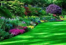 Amazing gardens and plants / Need to plant on your small farm? Check out the inspiration from our landscaping friends.