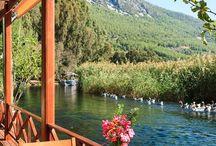 Doğa Türkiye