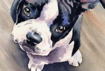 Dogs / by PAINTING ideas For SMZ