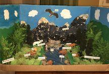 Taiga diorama