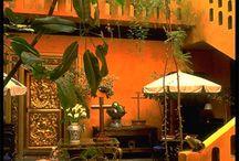 Mexican garden / One day!