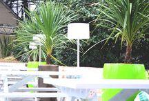 Garden Design & External Spaces