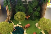 Diorama For Rhino Habitat