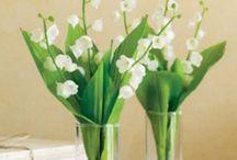 fiori composizioni