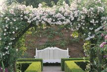 Walled Garden - Inner West / Wall with entrance and rose arbor