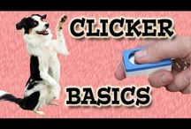 Clicker Dog Training / Clicker training is a reliable fun way to train animals.  It is scientific proven and used in zoo's and at Sea World around the World.  I only use clicker training and progressive reinforcement.  NO FORCE and NO CORRECTIONS! Pam's Dog Training Pam's Dog Academy Pamela Johnson San Diego Ca. / by Pam's Dog Academy