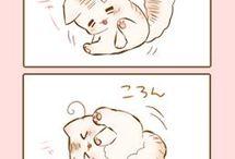 Kotełyy Nya~