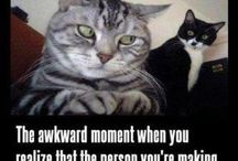 awkward... / by Erin Sochocky