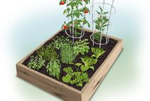 Garden Plans & Inspiration / Inspiring ideas, plans, photos and tips that will keep you growing with Bonnie Plants year-round. / by Bonnie Plants