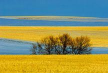 { local - beautiful saskatchewan } / Pictures of Saskatchewan