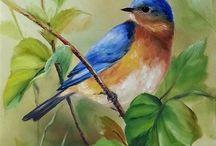 pájaros pequeños