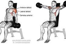 Shoulders & Calves
