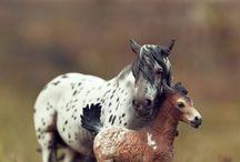Model horses / All time love
