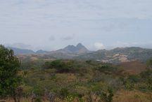 Coronado Lots/Land