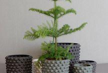 Make some planters!