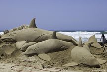 Sandy Art  / The coast brings out the creativity in all of us!