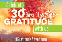 Gratitude Adventure / Make gratitude part of your daily life. #GratitudeAdventure / by It Works!