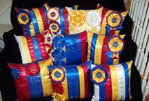 Box of Old Ribbons / by Cally Hass