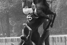 Интересное лошади / Фото и рисунки скаковых и рысистых лошадей