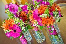 Flores , Flores , Flores