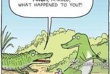 Alligators / Anything funny about alligators goes here. It's my middle grade sense of humor, the same humor that made me write Alligators Overhead.