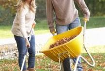 Energy Savings / Saving money on your utility bills by doing basic things around home and yard.