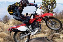 Motorcycles for Beginner Me!