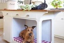 Pet Bed Ideas / We're passionate about beds and we know you're passionate about your pets.  So we have put together this pinboard of clever pet bed ideas.