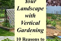 Ideas / Wall-gardening