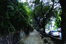 Urbanismo / La ciudad y el hombre, vectores y carbono