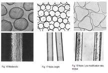 vlakna