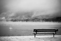 Steven Cox Instagram Photos Nothing prettier than #Tahoe at first snow.  #LakeTahoe #winter #snow #instapics #blackandwhite