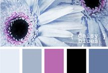Color Palettes / by Adriana