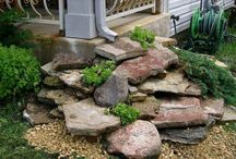 Landscaping / Ideas for landscaping and outdoor decor.