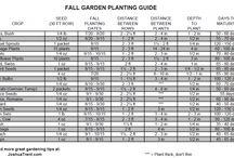 Fall Garden / by Sarah Murphy