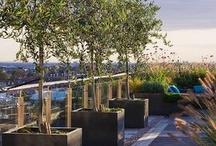 terrazzi giardini modern style