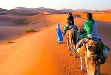 Estudia árabe en Marrakech con Languagebookings