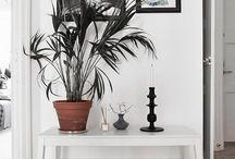 Planter og interiør