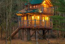 Ağaç Evler ♥