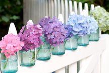 Flower dream!!!!!!!!