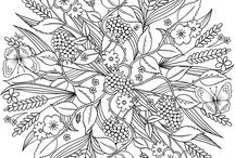 Coloring Pages and Patterns