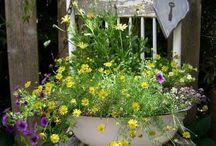 Pretty Planted Garden Chairs / Garden Chairs  / by Flea Market Gardening