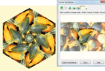 EQ7 / Quilting software
