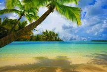 • Dream vacation •