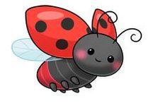 lienky a chrobáčiky